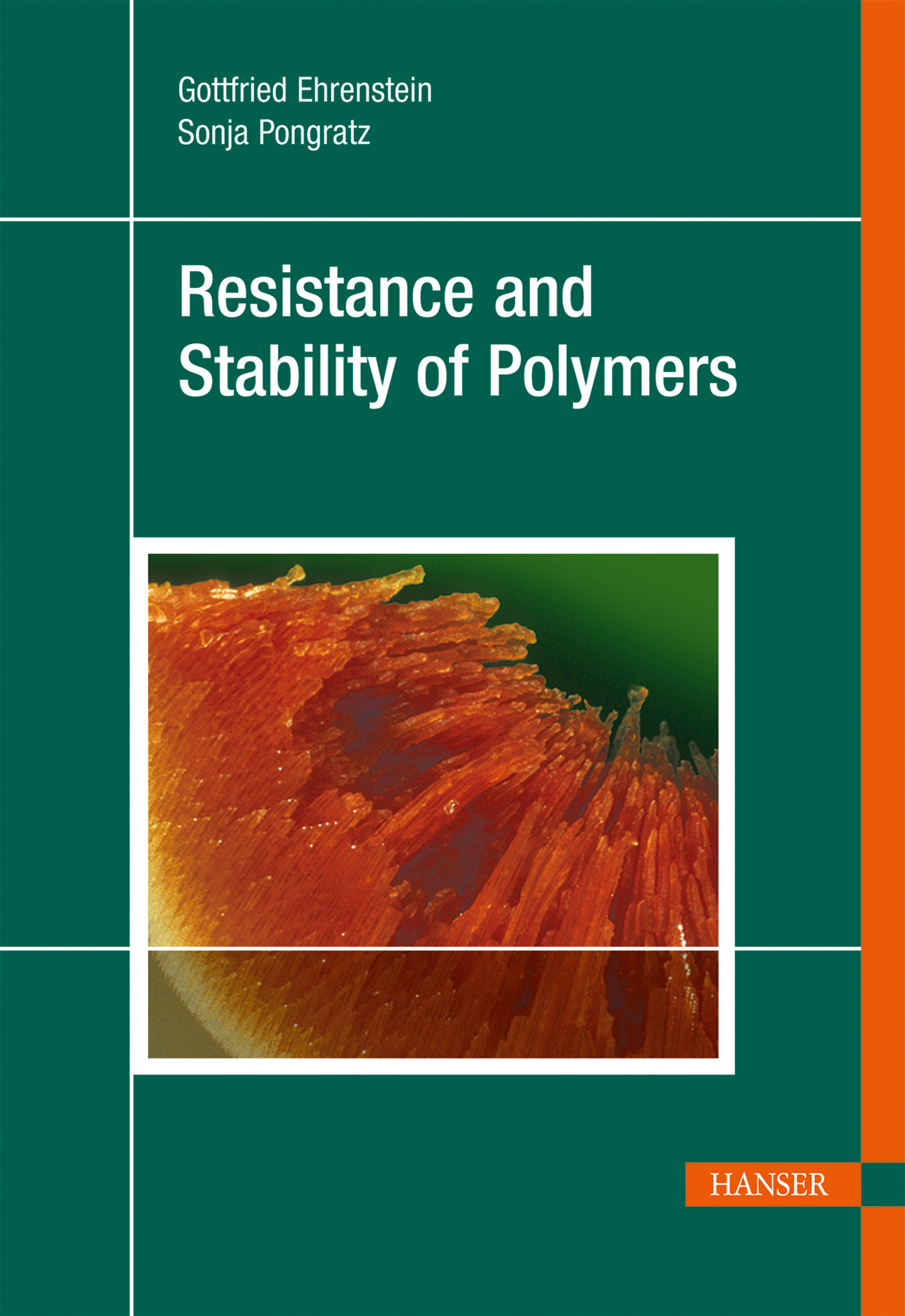 Ehrenstein, Pongratz, Resistance and Stability of Polymers, 978-3-446-41645-1