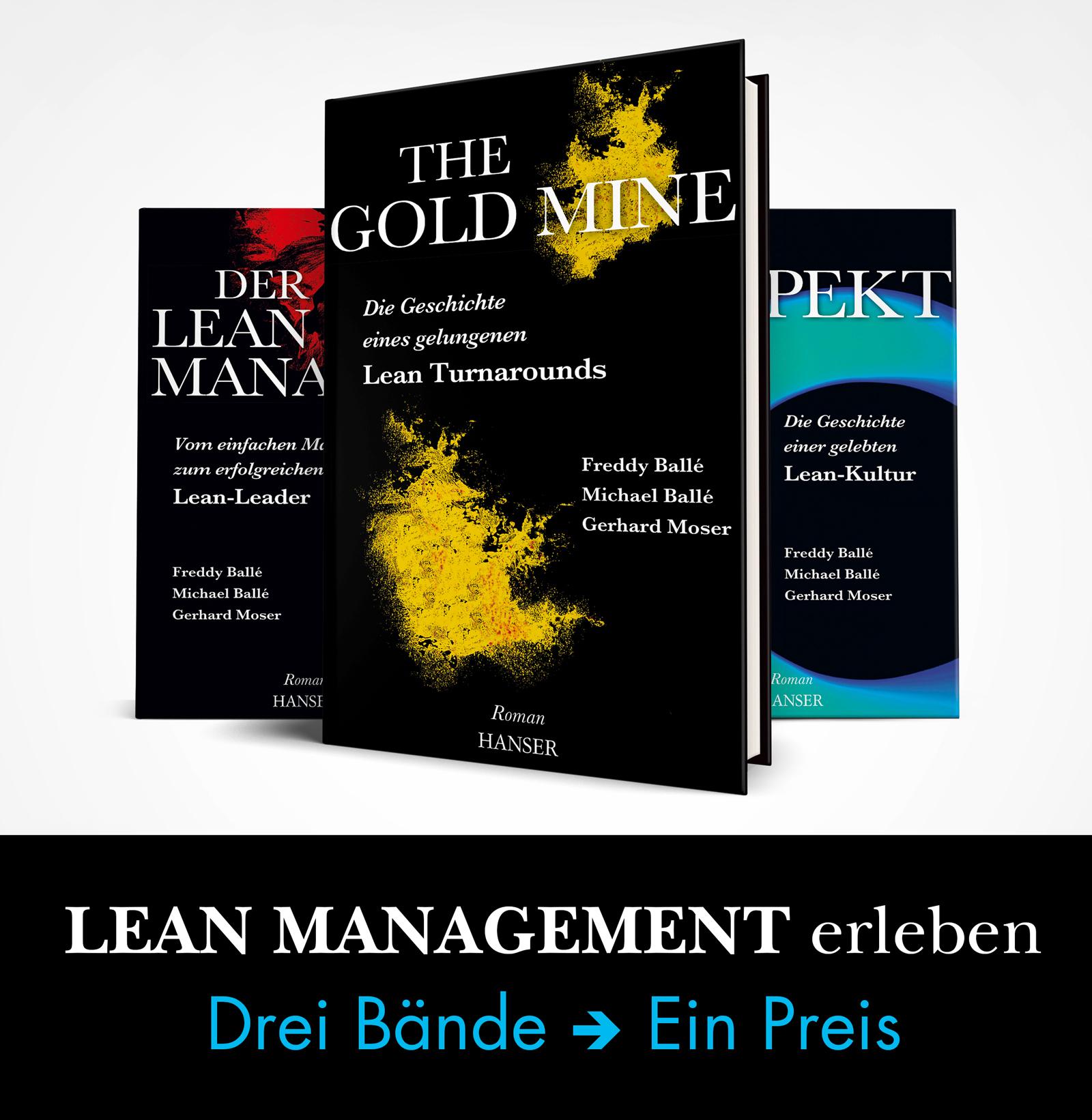 Balle, Balle, Lean Management erleben, 978-3-446-45924-3