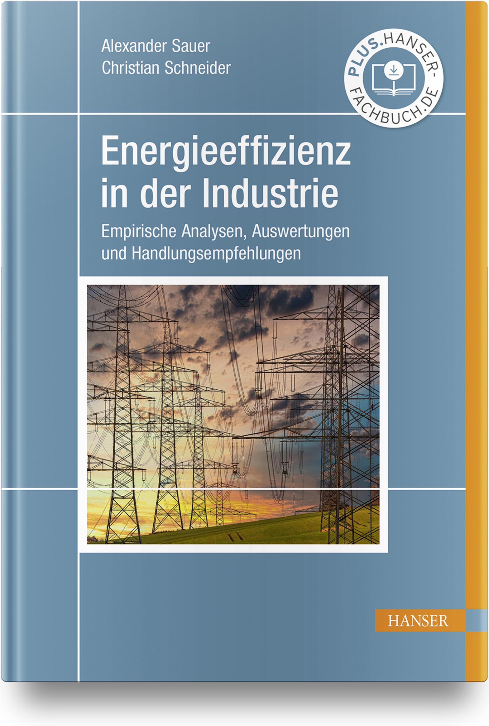 Sauer, Schneider, Energieeffizienz in der Industrie, 978-3-446-46650-0