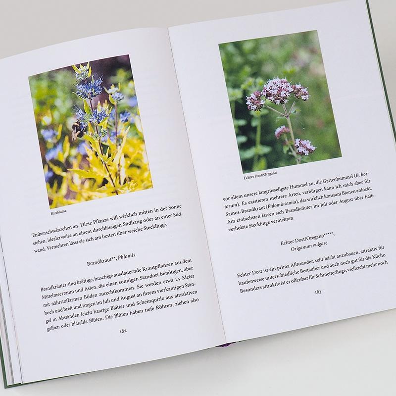 Bienenweide und Hummelparadies